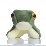 Luke Frog - SoftToy