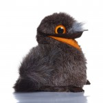 Matthew Marbled Frogmouth - Soft Toy